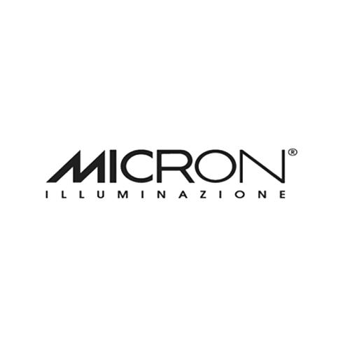 micron-logo